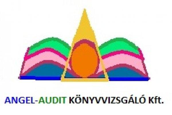 K%F6nyvel%E9s%2C+K%F6nyvvizsg%E1lat%2C+Ad%F3tan%E1csad%E1s%2C+P%E1ly%E1zati+audit