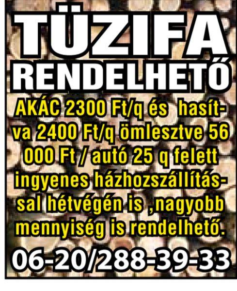 T%FBzifa+rendelhet%F5