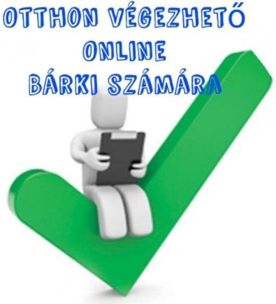 Otthoni+internetes+munka