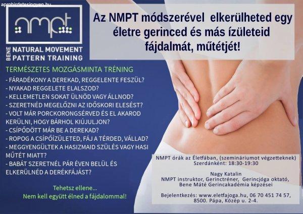 NMPT+Gy%F5r%2C+P%E1pa