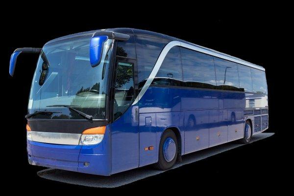 Autóbuszvezető