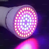 Növény, palántanevelő led lámpa 72db KÉK ÉS PIROS 2835 SMD L